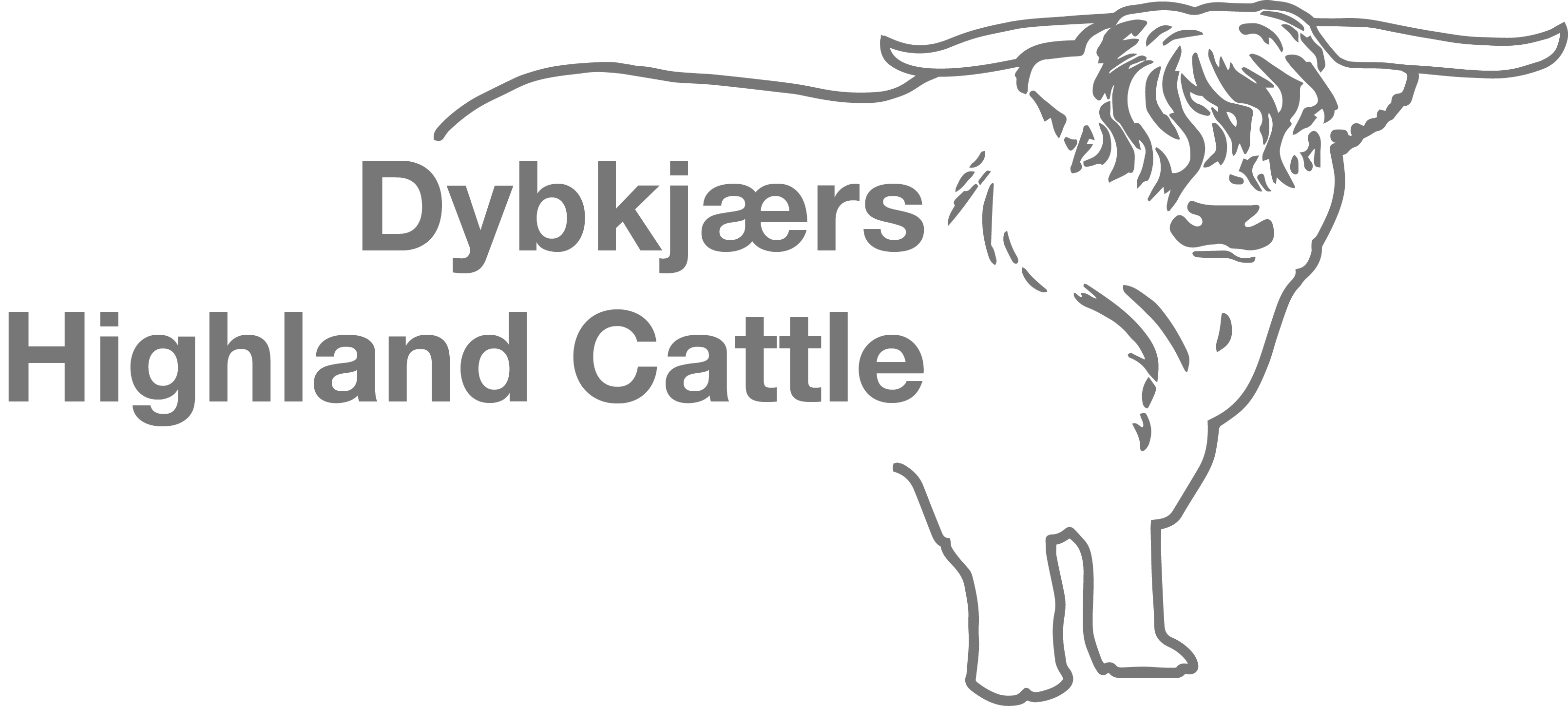 Dybkjærs Highland cattle logo
